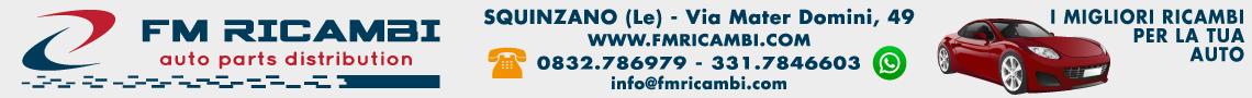 FM Ricambi